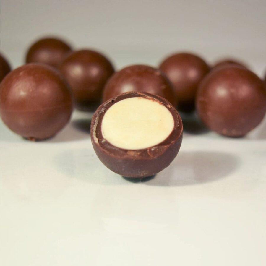 čokoládové blahokoule - kokos